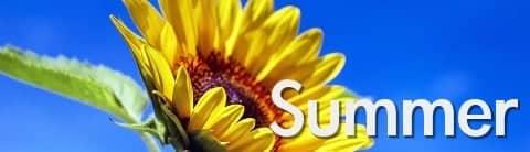 著作権フリーBGM(音楽) Vol.09「夏」